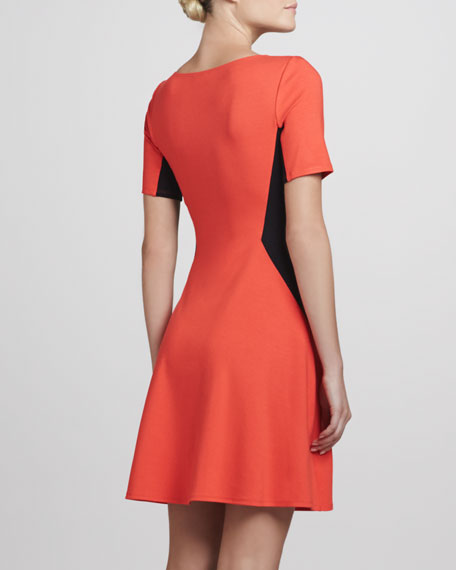 Filopa Colorblock Flare Dress