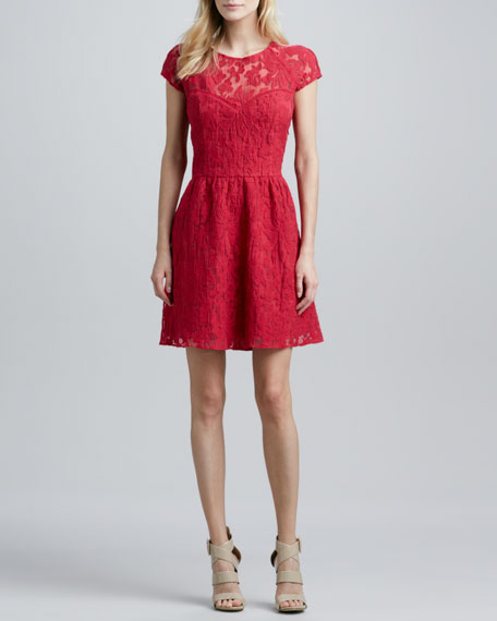 Winsor Cap-Sleeve Lace Dress