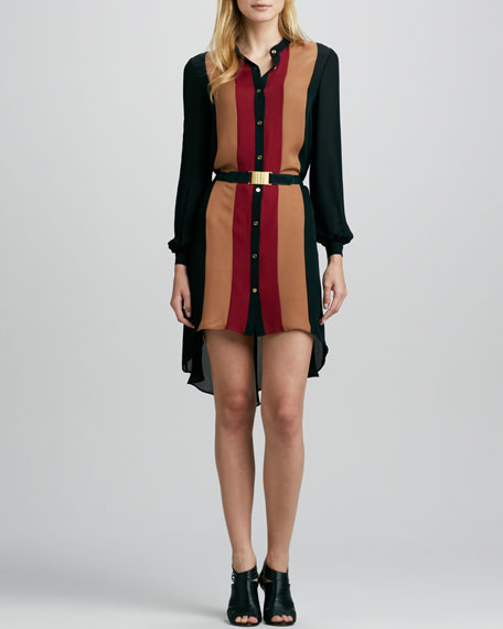 Wide-Stripe Silk Shirtdress