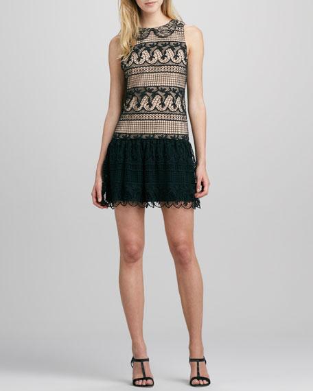 Peri Lace Dress
