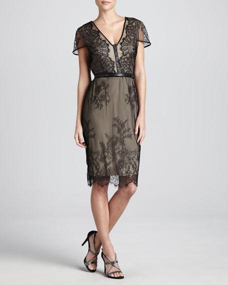 Nancy Lace Mesh Sheath Dress
