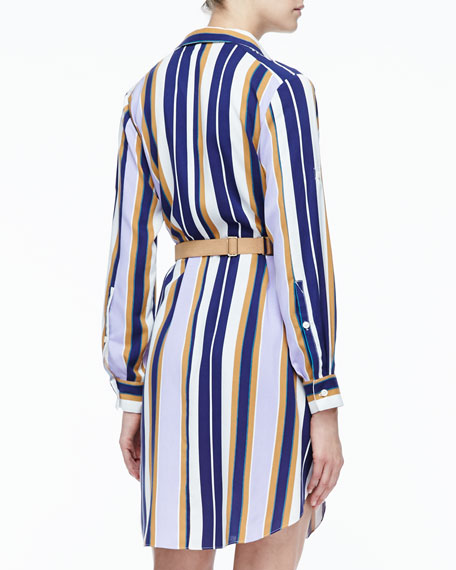 Striped Belted Fuji Silk Shirtdress