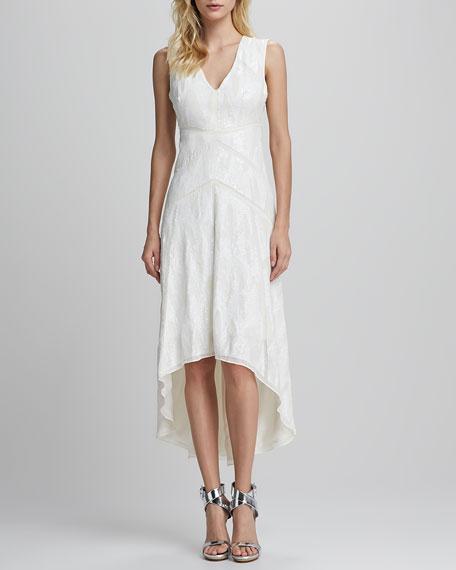 Salma High-Low Lace Dress