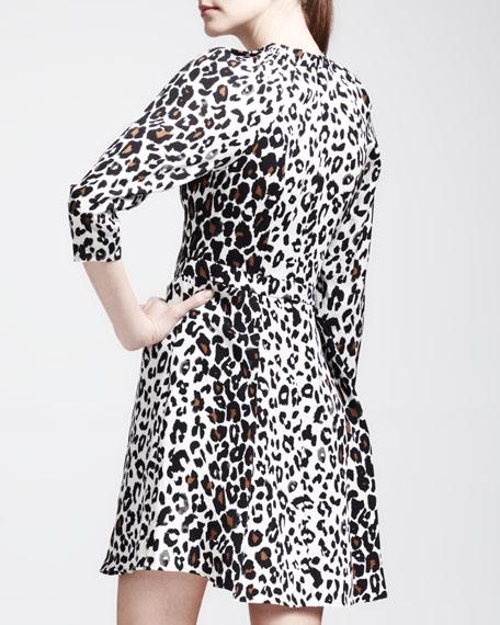 Dow Leopard-Print Dress