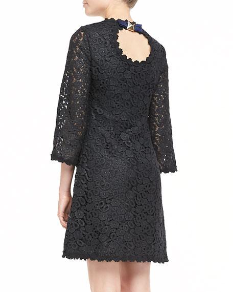 quinn 3/4-sleeve lace dress