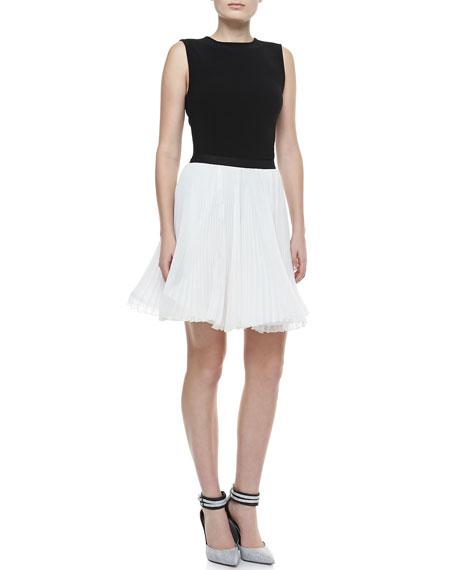 Shea Pleated Chiffon Skirt