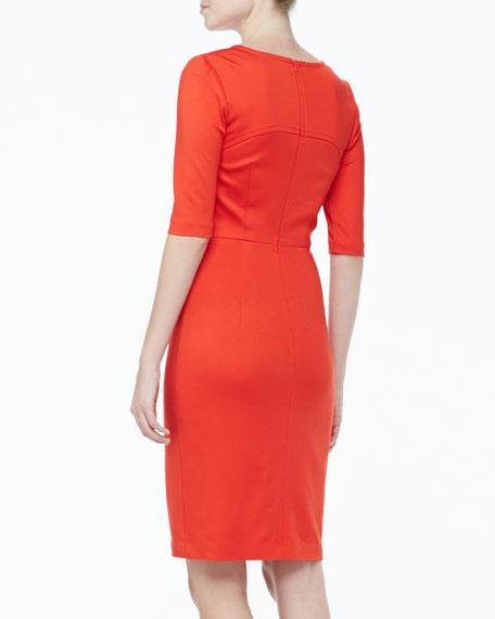 Danton Fitted Ponte Dress