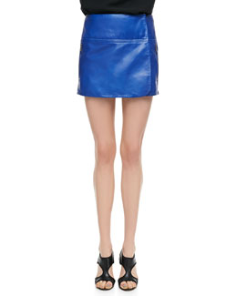 Diane von Furstenberg Liam Leather Zip Skirt