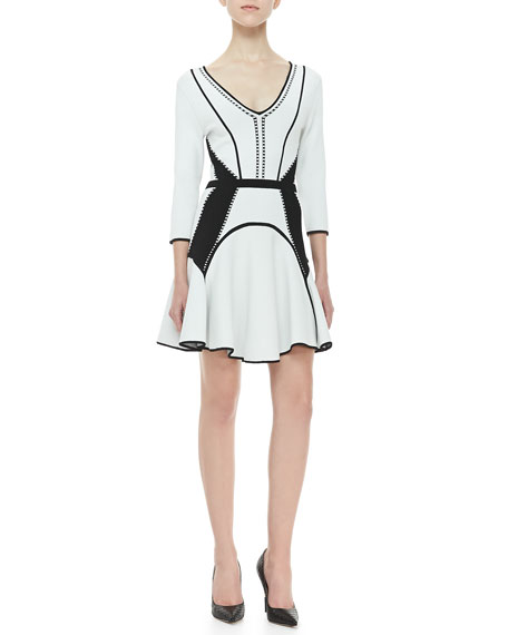 Rhonda Fit-and-Flare Dress, White/Black