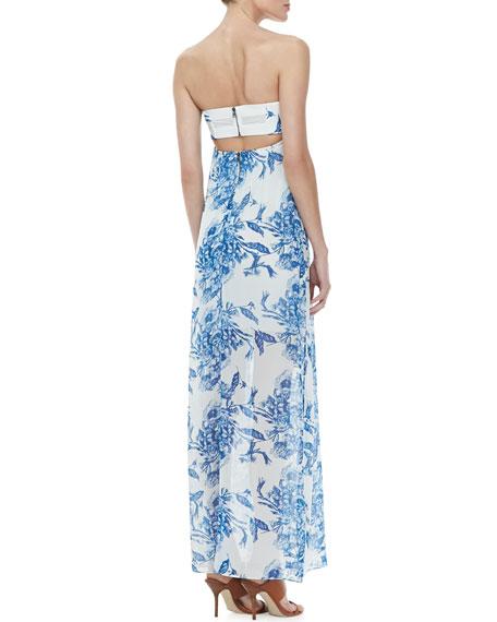 Kiernan Strapless Floral-Print Maxi Dress
