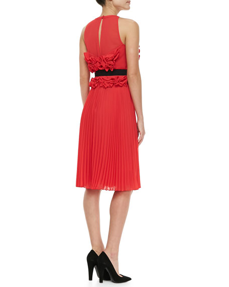 Safina Ruffled Pleated Dress