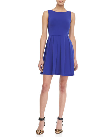 Edina Sleeveless Fit-and-Flare Dress