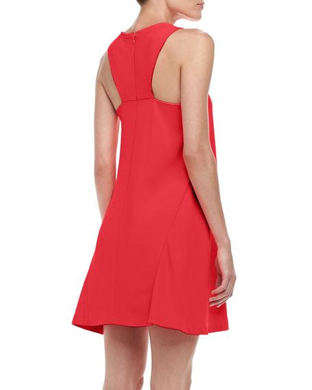 Lysette Sleeveless Trapeze Dress