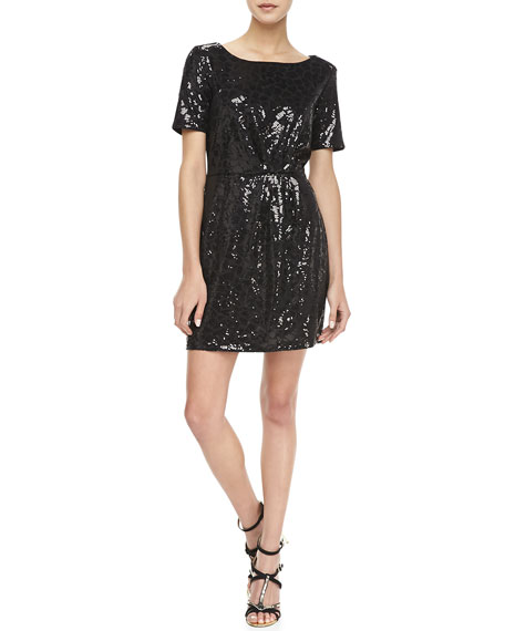 Claudia Short-Sleeve Sequined Dress