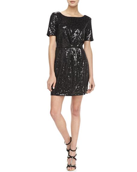 Claudia Short-Sleeve Sequined Dress