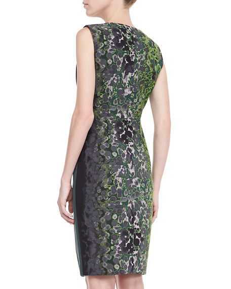 Lucillie Printed Sheath Dress