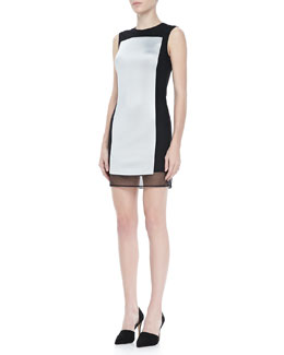 Rag & Bone Lyon Sleeve Paneled Dress