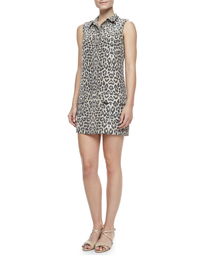 Equipment Lucida Leopard-Print Silk Dress