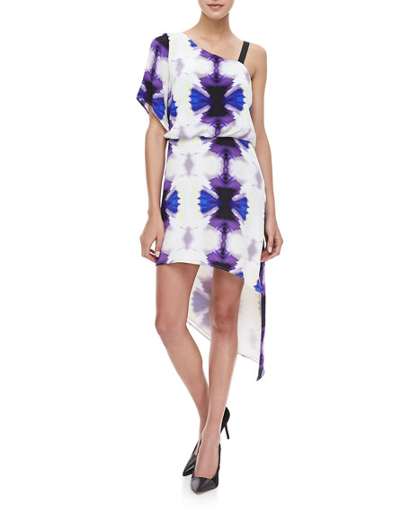 Poise Asymmetric Printed Dress