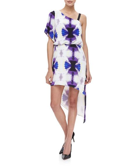 Poise Asymmetric Printed Dress