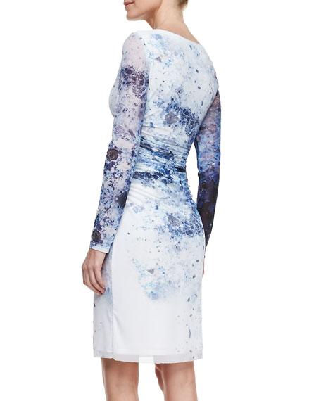 Long-Sleeve Printed Mesh Dress