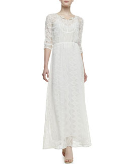12th Street by Cynthia Vincent Embroidered-Lace Maxi Dress