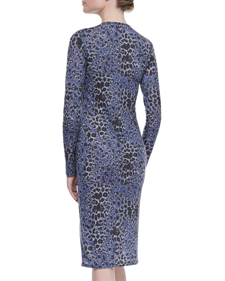 Leopard-Print Long-Sleeve Dress