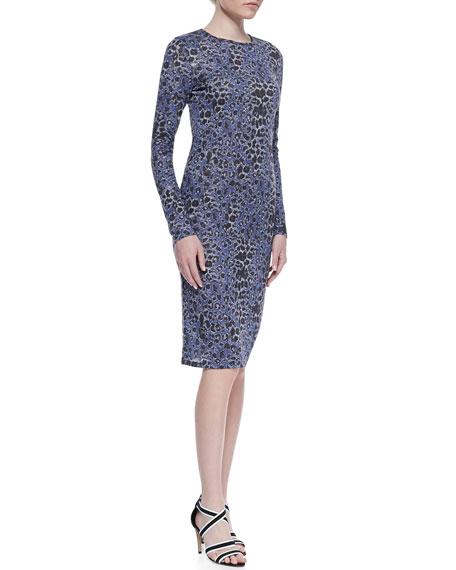 Leopard-Print Long-Sleeve Dress