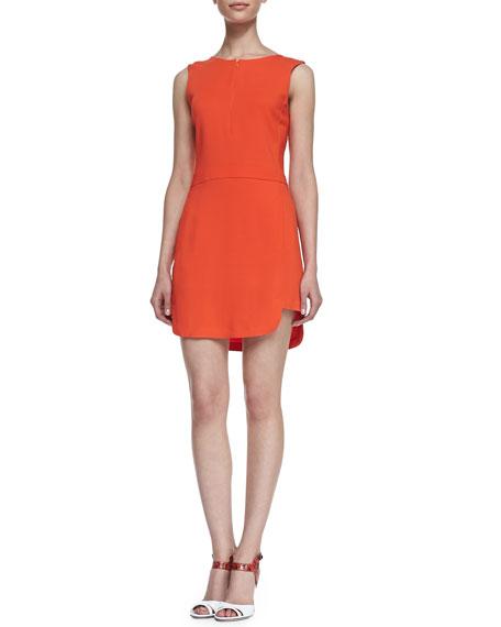 Ford Sleeveless Dress