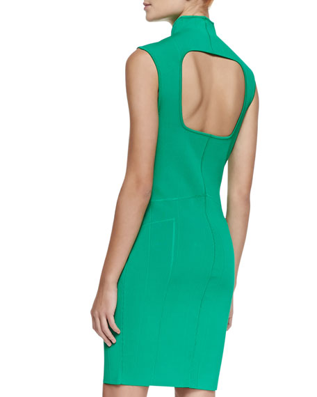 Sleeveless Fitted High-Collar Dress