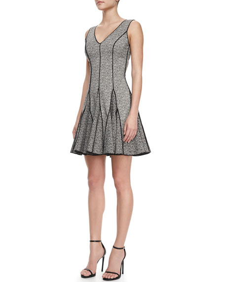 Outlined Printed Flare Dress