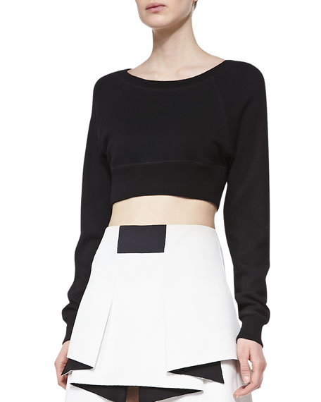Cropped Long-Sleeve Sweatshirt
