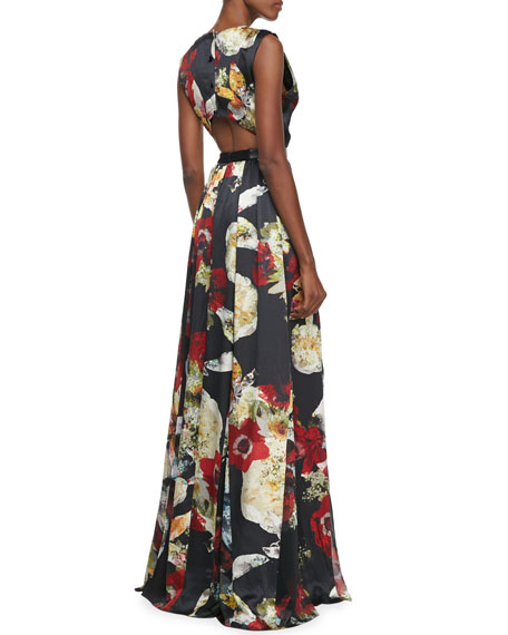 Triss Floral-Print Sleeveless Maxi Dress
