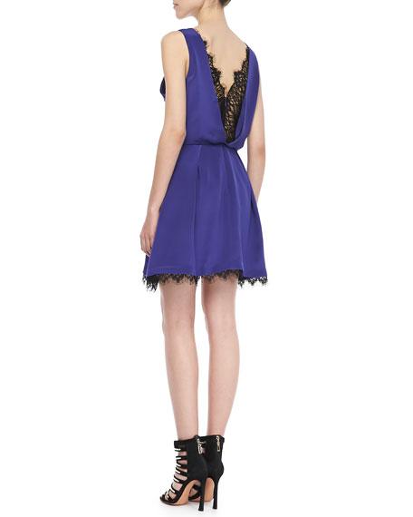 Collins Sleeveless Lace-Trim Dress