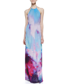 Ted Baker London Alexis Summer At Dusk Print Maxi Dress