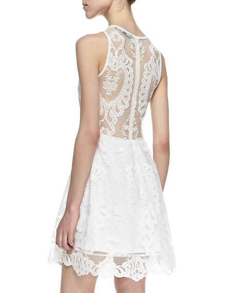 Lulu Mesh-Inset Lace Dress