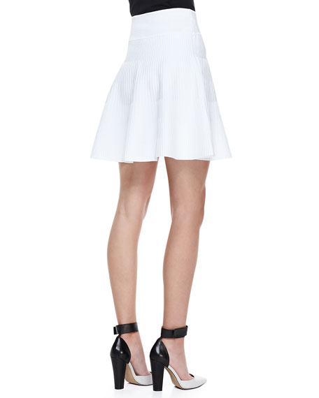 Ribbed Knit Fit & Flare Skirt