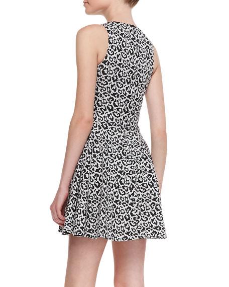 Leopard-Print Fit-&-Flare Knit Dress