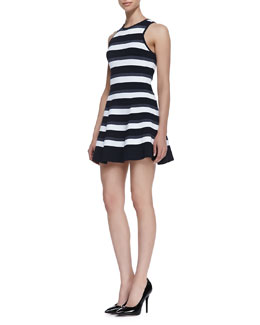 A.L.C. Huntington Fit-and-Flare Stripe Dress