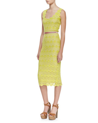 Belle Belted Lace Pencil Dress