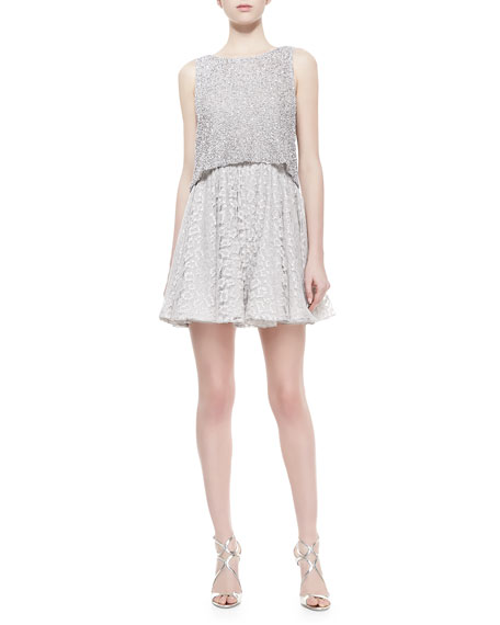 Alice + Olivia Hilta Beaded Combo Swing Dress