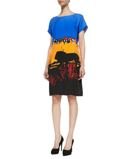 Diane von Furstenberg Harriet Runway Printed Shift Dress, Lion Landscape
