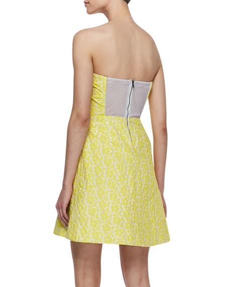 Grove Strapless Sculpted Dress