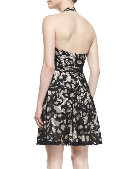 New Amelia Lace Halter Flare Dress