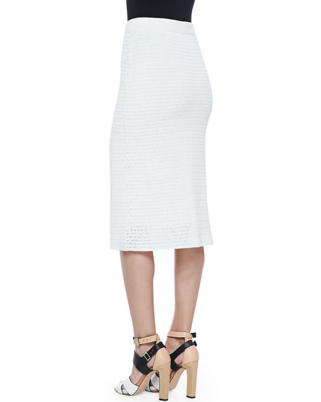 Arabis Knit High-Waist Skirt