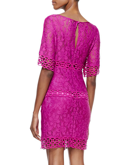 Half-Sleeve Lace Shift Dress, Ultra Berry