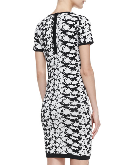 Nicole Miller Artelier Short-Sleeve Floral-Print Dress