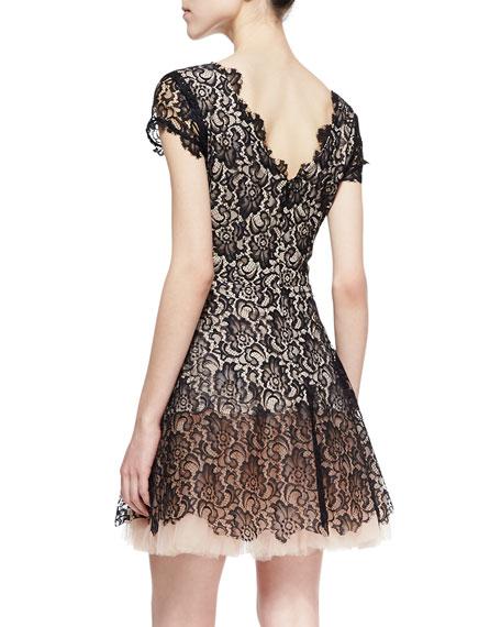 Caelyn Cap-Sleeve A-Line Lace Dress