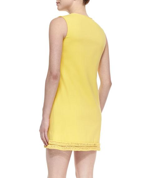 Tressa Shift Dress
