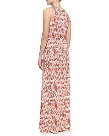 Emilia Ikat-Print Maxi Dress